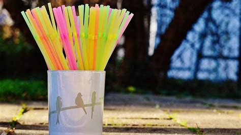 Paper Straws are so Hot Now: Know Where to Get It