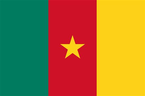 What Do The Colors And Symbols Of The Flag Of Cameroon